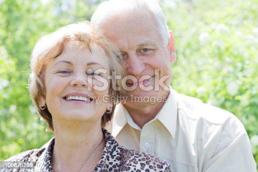 510491454 istock photo Attractive senior couple smiling 105876239