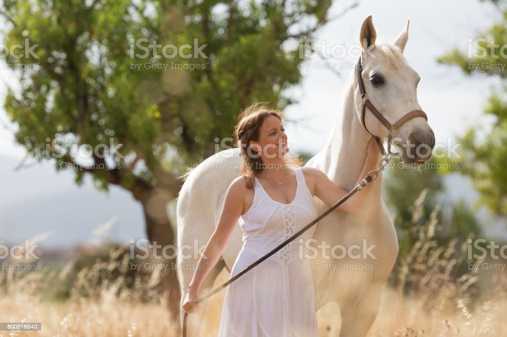 attractive woman in white dress with white horse in yellow field stock photo