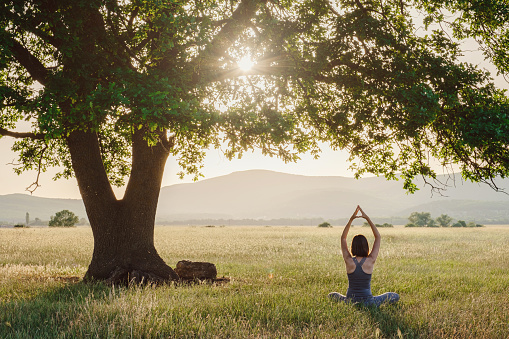 Attractive woman practices yoga in nature in summer. Healthy lifestyle. Fitness and sport. outdoor harmony with nature, calm scene