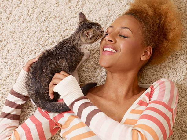 attractive young african woman laying on carpet with cat stock photo