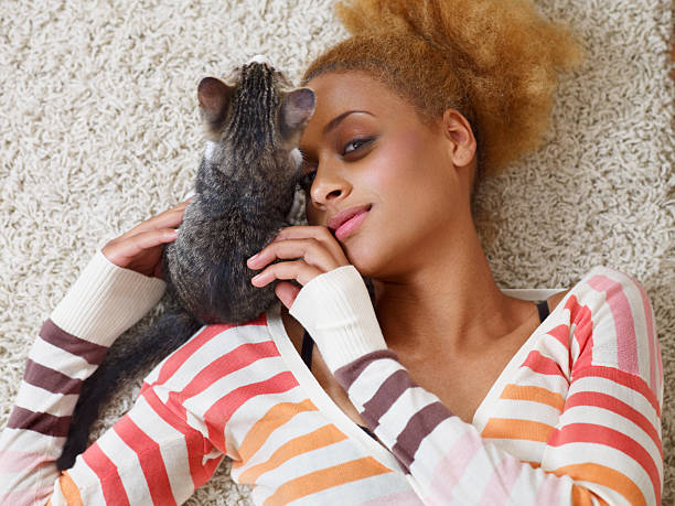 Attractive young african woman laying on carpet with cat picture id175495667?b=1&k=6&m=175495667&s=612x612&w=0&h=br6iezzhaxnyt38 ctkj4axbpnwugxza5edgqtveqy8=