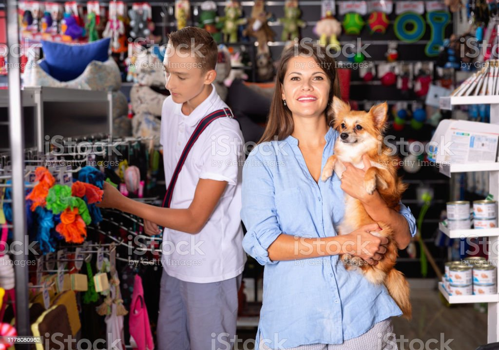 Attractive Young Woman With Cute Puppy In Hands Buying Dog Accessories In Store Stock Photo Download Image Now Istock