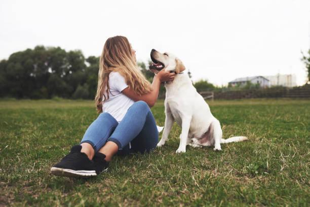 Attraktive junge Frau mit Hund im Freien. Gril auf einem grünen Gras mit Labrador Retriever – Foto