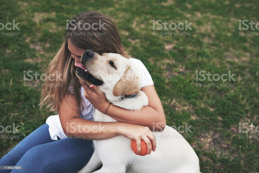 Attractive young woman with dog outdoors. Gril on a green grass with...
