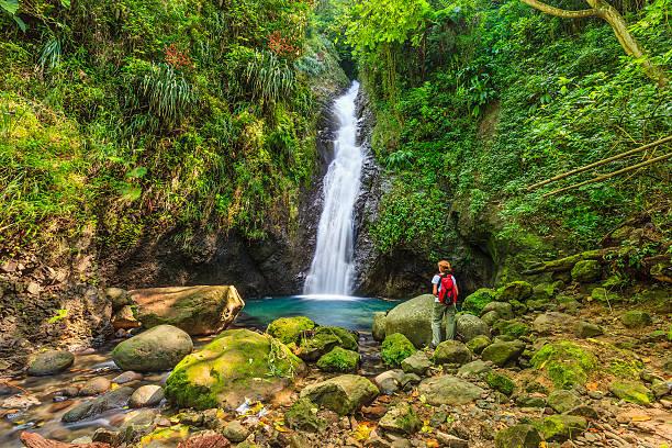Au Coin Falls, Grenada W.I. stock photo