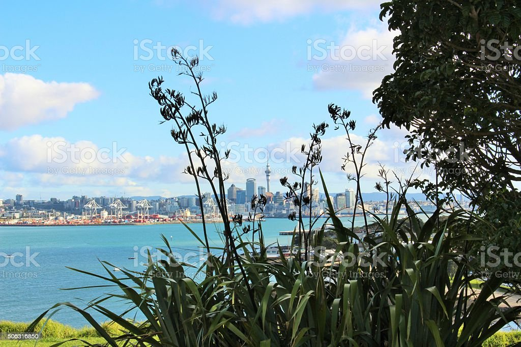 Auckland City from across the Harbour stock photo