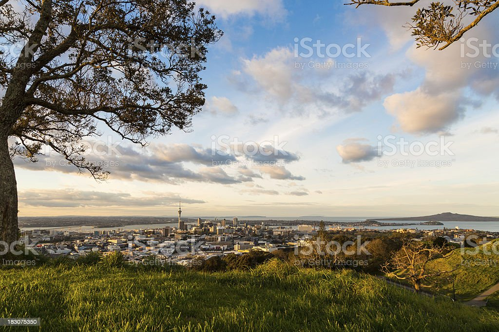 Auckland City from Mount Eden stock photo