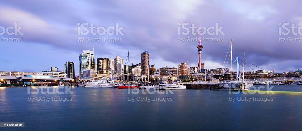 Auckland City Panorama. stock photo