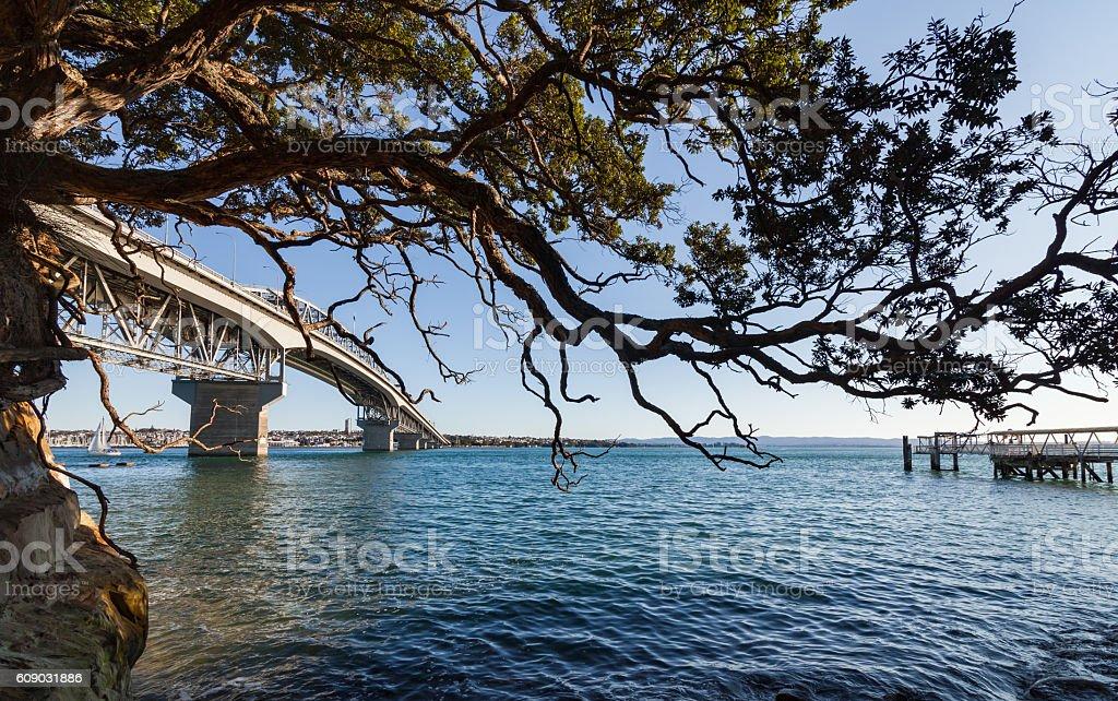Auckland Harbour Bridge. stock photo
