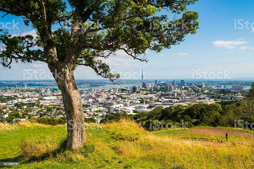 Auckland Panorama stock photo