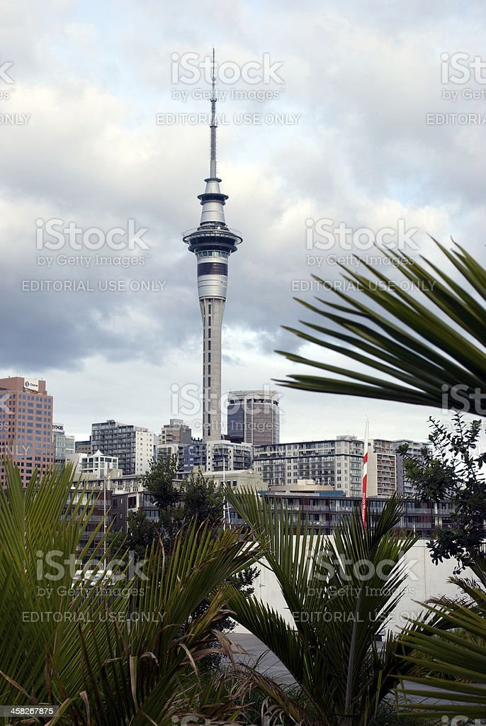 Auckland Sky Tower, New Zealand royalty-free stock photo