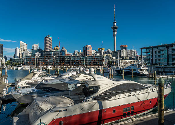 auckland skyline - nzgmw2017 stock pictures, royalty-free photos & images