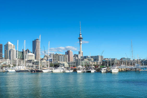 Auckland skyline with the landmark, Sky Tower, in New Zealand. stock photo