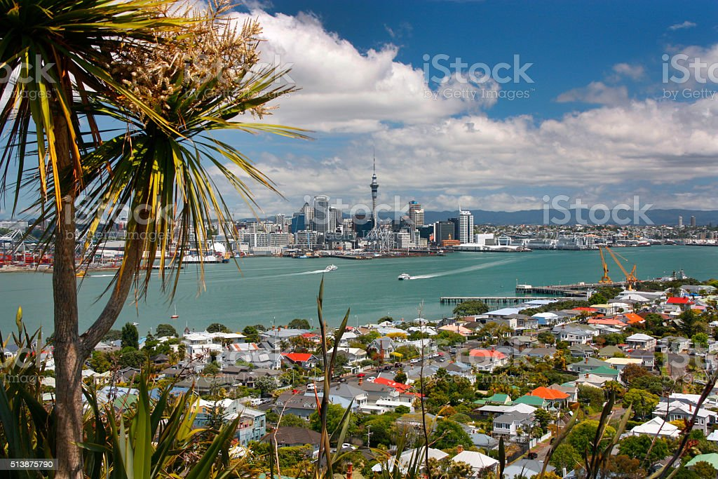 Auckland summer stock photo