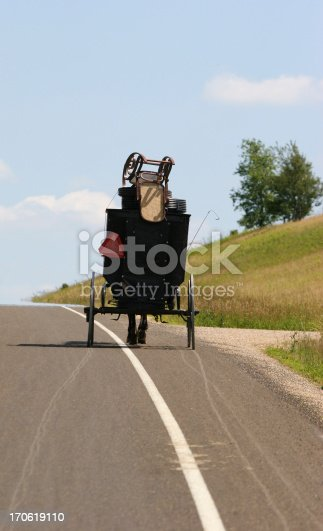 Amish Buggy on the way to a local auction