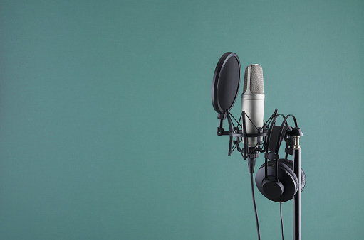 Professional microphone in a mic holder. Copy space for your design.