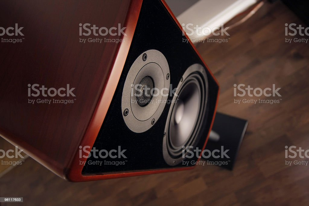 Audiophile royalty-free stock photo