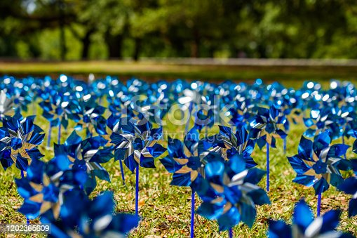 Pinwheels commemorating Child Abuse Prevention Month at the popular Audubon Park in New Orleans, Louisiana.