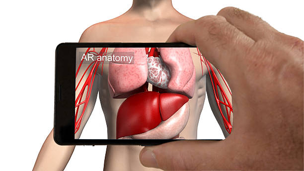 augmented reality medical imaging app. - augmented reality stock photos and pictures