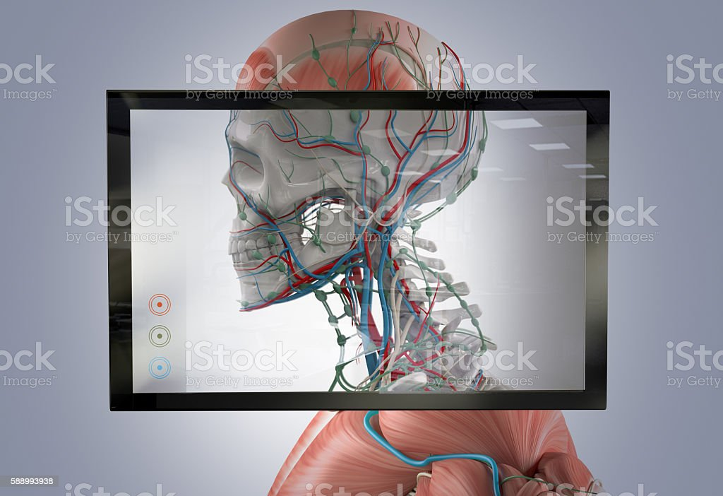 Augmented reality showing human anatomy. stock photo