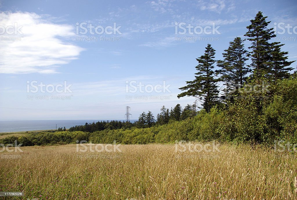 August royalty-free stock photo