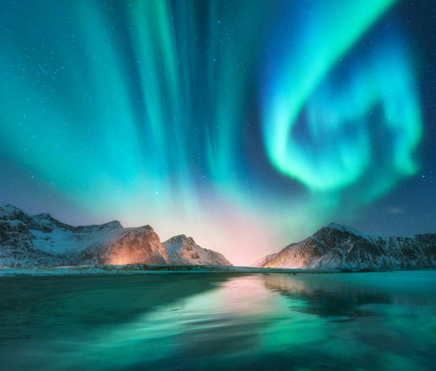 aurora borealis in lofoten islands, norway. aurora. green northern lights. starry sky with polar lights. night winter landscape with aurora, sea with sky reflection, stones, beach and snowy mountains - fjord stock photos and pictures