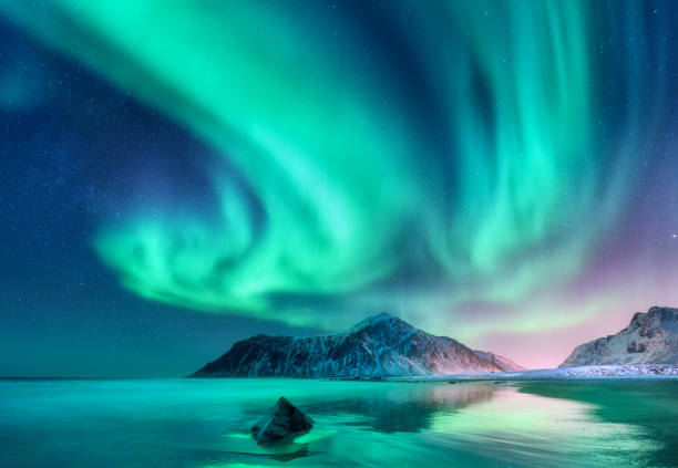 aurora borealis. northern lights in lofoten islands, norway - den belitsky foto e immagini stock