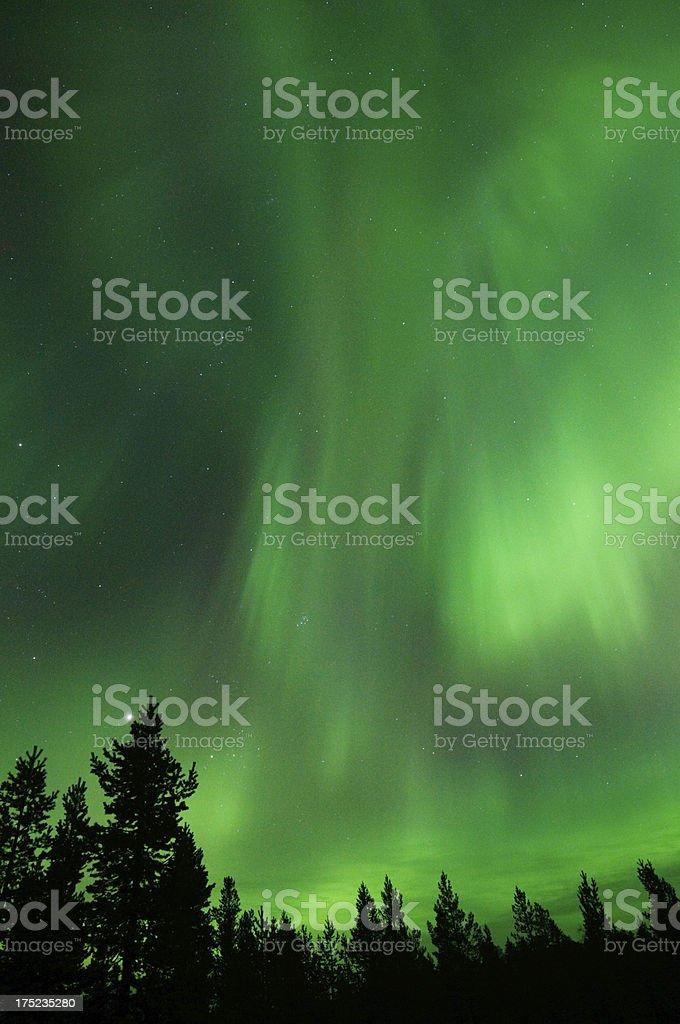 Aurora Borealis, Northern lights royalty-free stock photo