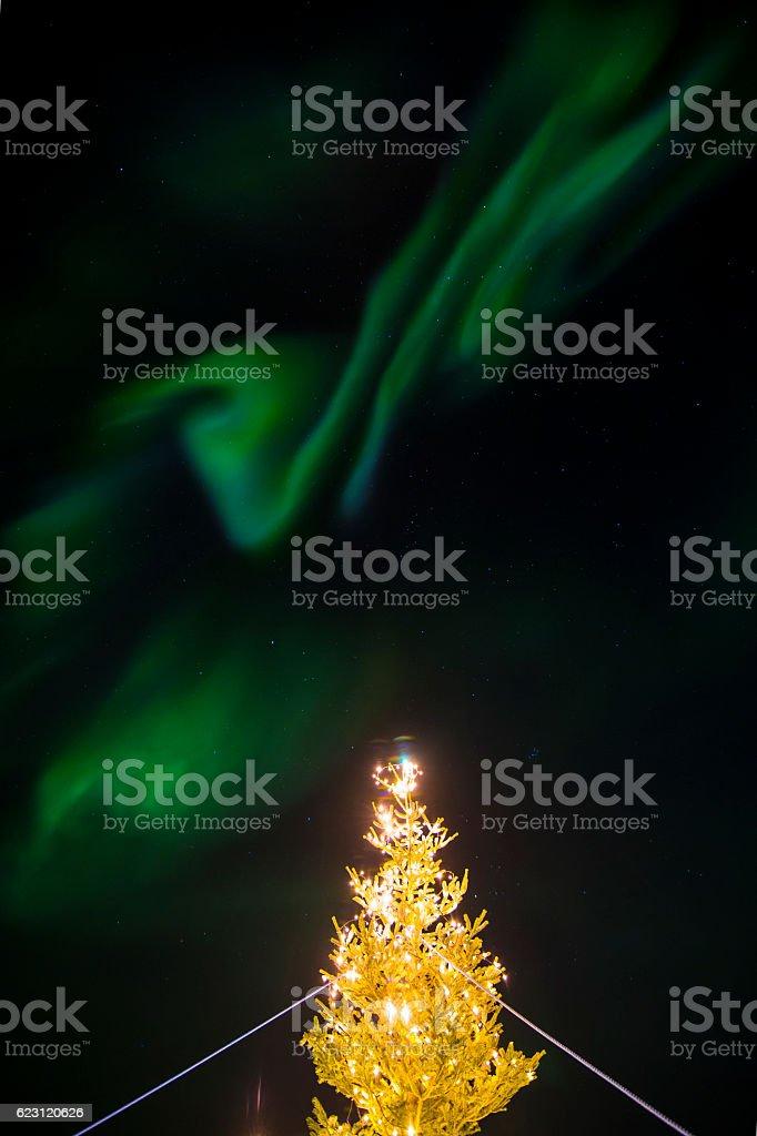 Aurora Borealis over Christmas tree stock photo