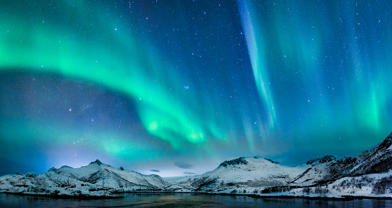 Aurora borealis over in the dark night sky over the snowy mountains on the sea coast at the Lofoten islands, Norway. Northern lights over a winter landscape or polar lights in the starry sky with aurora swirling.