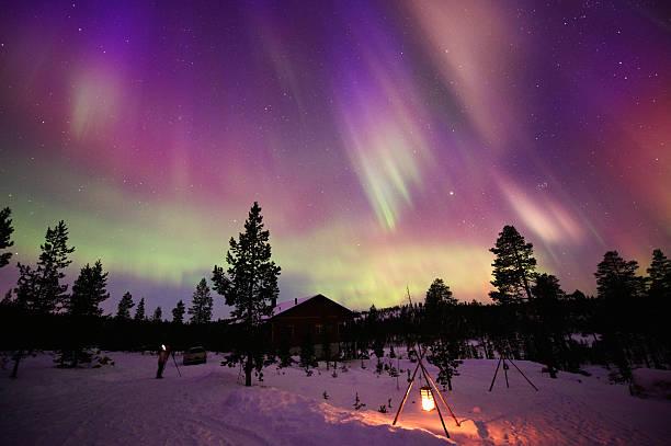 aurora borealis - pine forest sweden bildbanksfoton och bilder