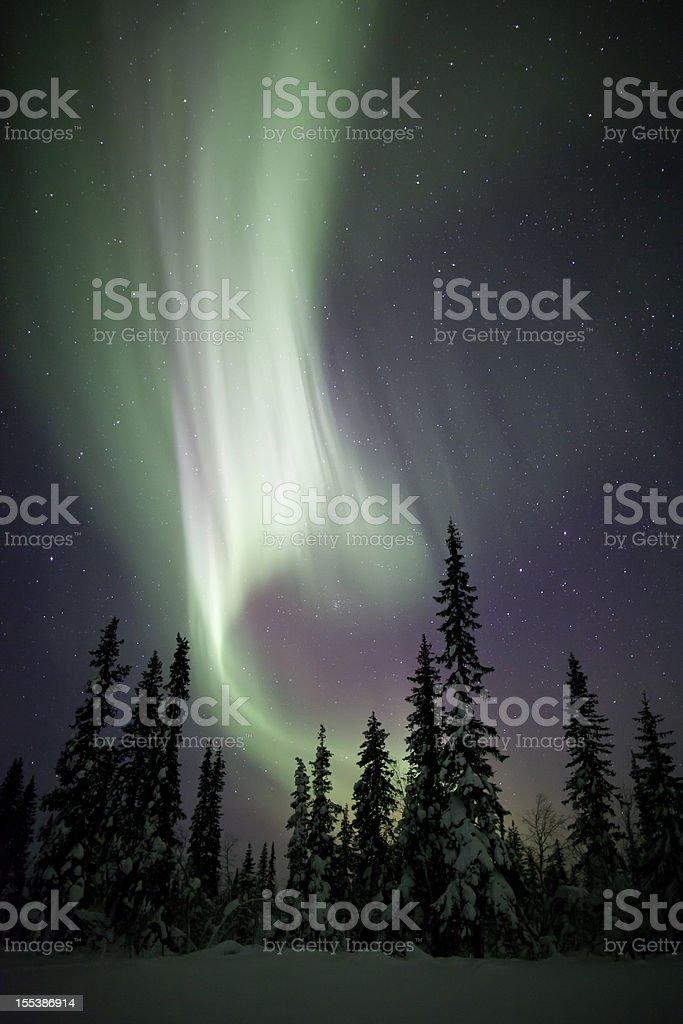Aurora Borealis Winter Scene royalty-free stock photo
