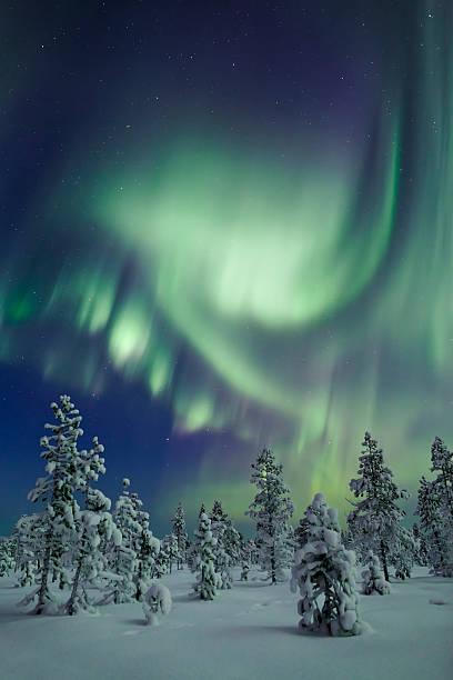 aurora dance - norrbotten bildbanksfoton och bilder
