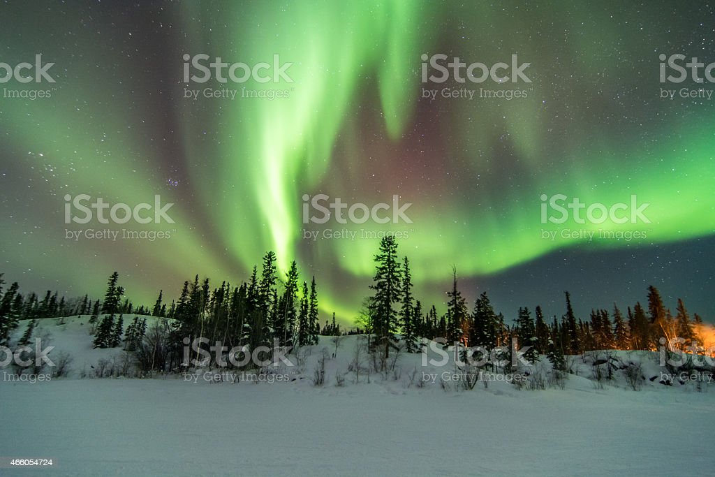 Aurora Over Trees in Yellowknife, Canada stock photo