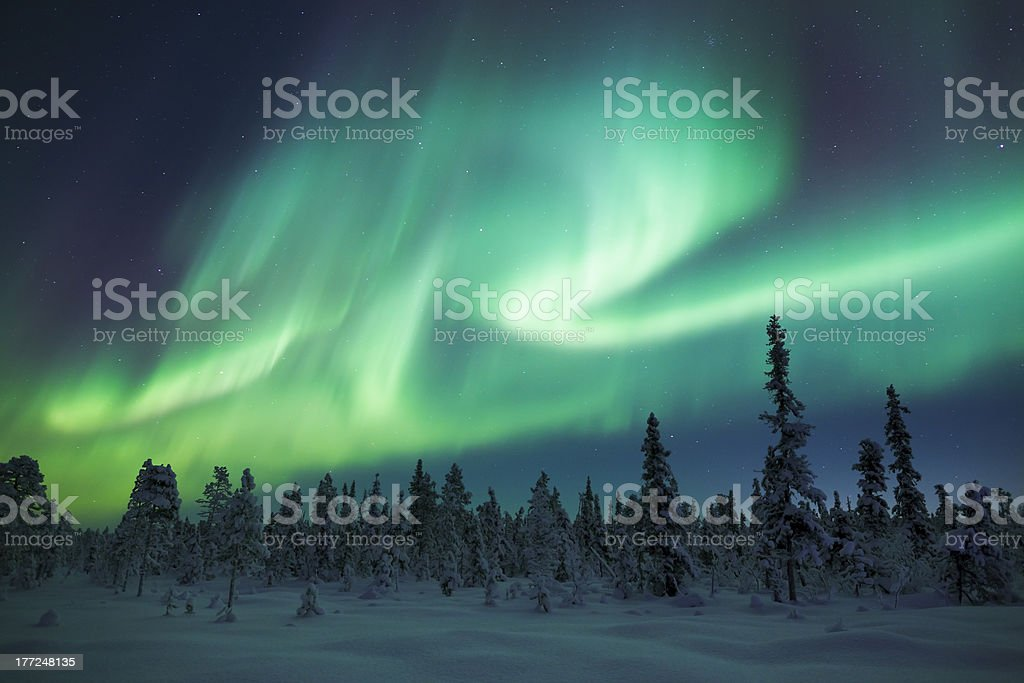 Aurora Show A strong display of Aurora over the frozen forests of Sweden. This dispaly seemed to take on the shape of the letter 'R'. A blanket of snow lies on the ground and stars are visible behind the green Aurora. Aurora Borealis Stock Photo