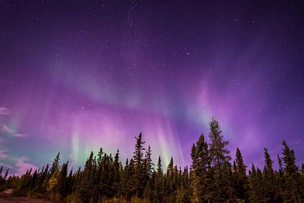 aurura borealis sobre yellowknifecanada.kgm, nt - tundra imagens e fotografias de stock