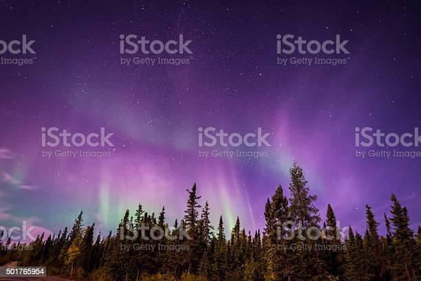 Photo of Aurura Borealis over Yellowknife, NT