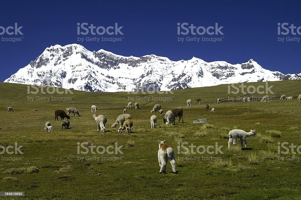 Ausangate Mountain stock photo
