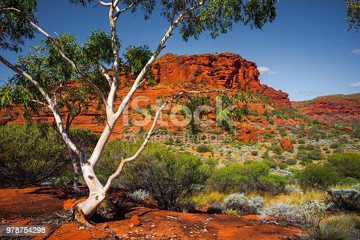 Beautiful Australian Landscape