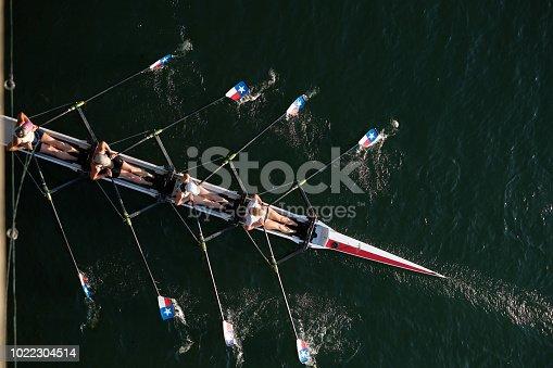 Rowers in Austin, Texas under Congress Bridge