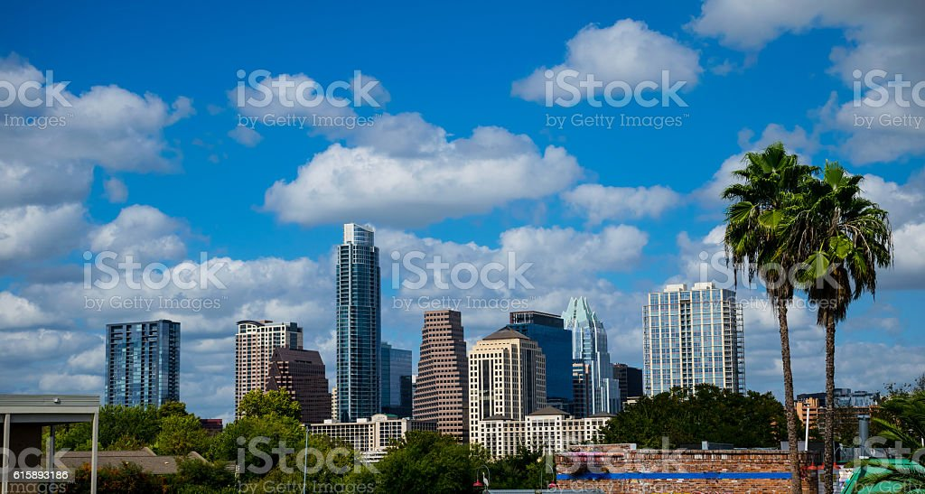 Austin Texas Paradise Palm Trees Capital Cities Stock