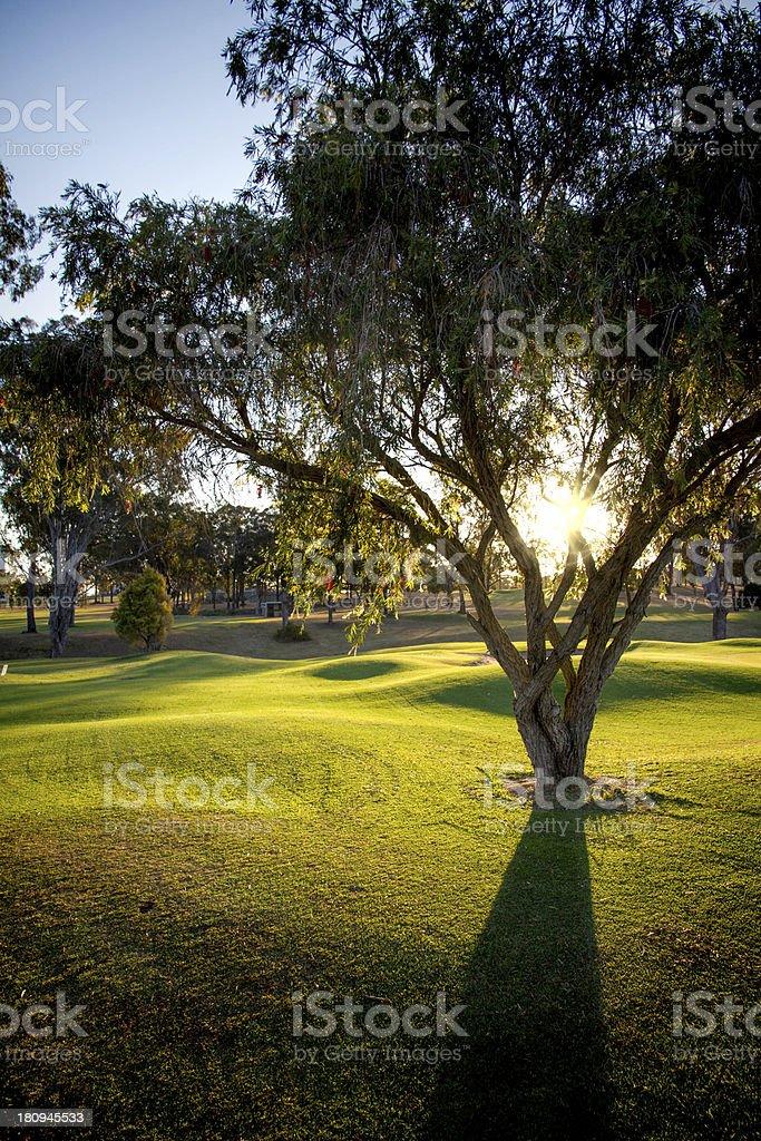 Austrailian Golf Course stock photo