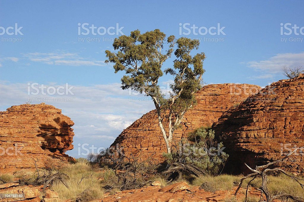 Australia countryside with red rocks stock photo