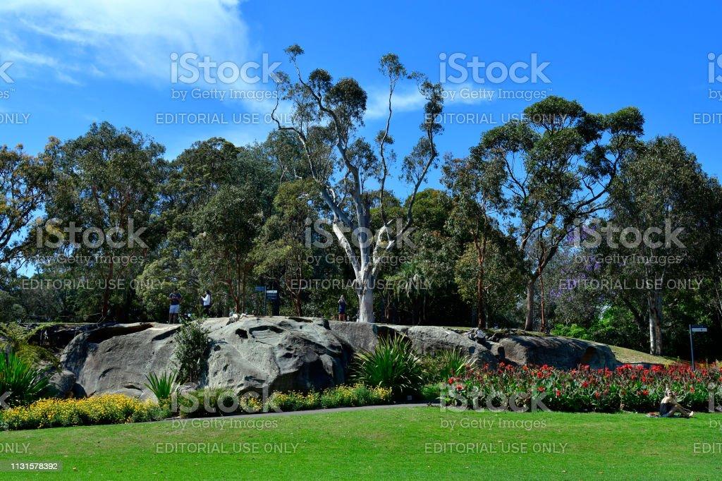 Australië, NSW, Sydney, Royal Botanic Garden foto