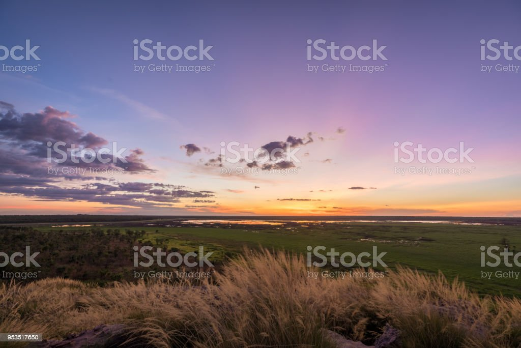 Australia Outback sunset with grass in foreground stock photo