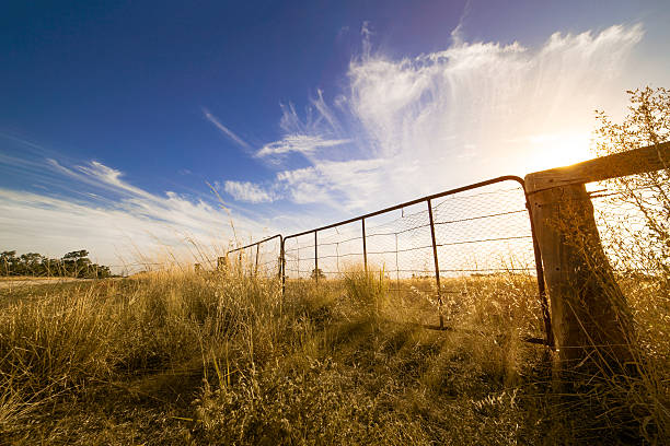 Australia Outback Australian fence paddock stock pictures, royalty-free photos & images