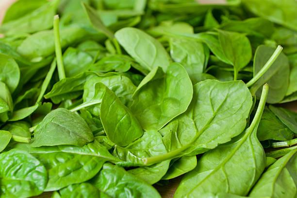 Australian Baby Spinach stock photo