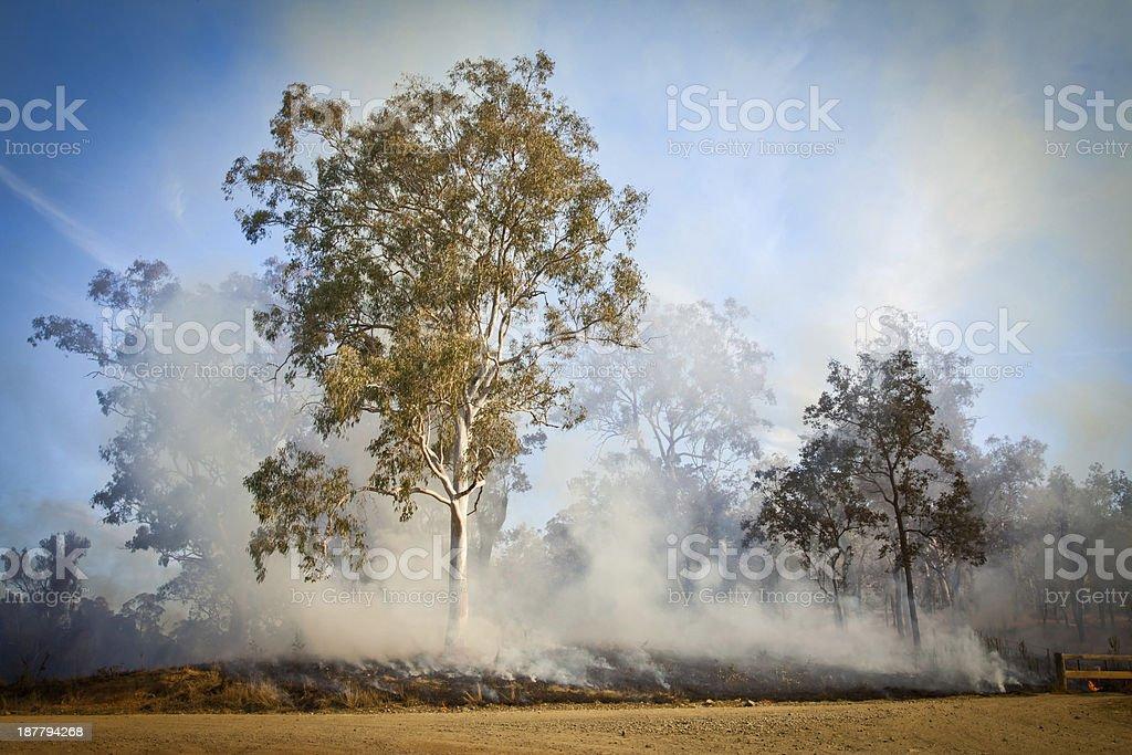 Australian Bush Fire stock photo