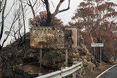 istock Australian bushfires: burnt road sign and eucalyptus tree near the road at Blue Mountains. 1199426067