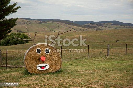 A rural Australian Christmas decoration.  Hay Bale Rhudolf.